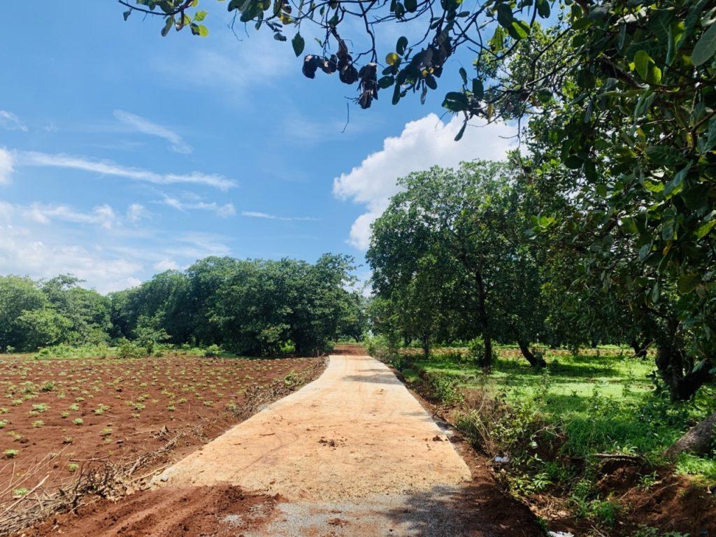 Đất liền kề măt tiên đường Phước Bình, diện tích 1000 m2