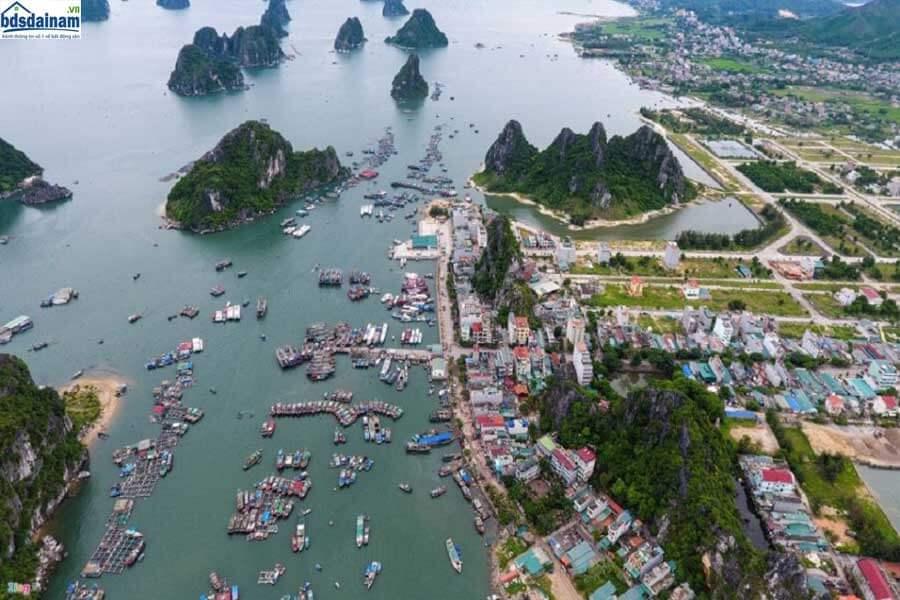 Thị trường nhà đất Phú Quốc đang yên tĩnh, nhà đầu cơ rút lui