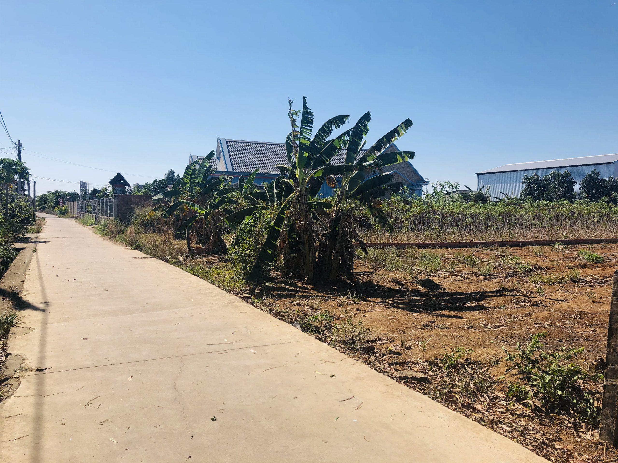 Dat nen gan san bay Long Thanh, đất nên gần sân bay Long Thành