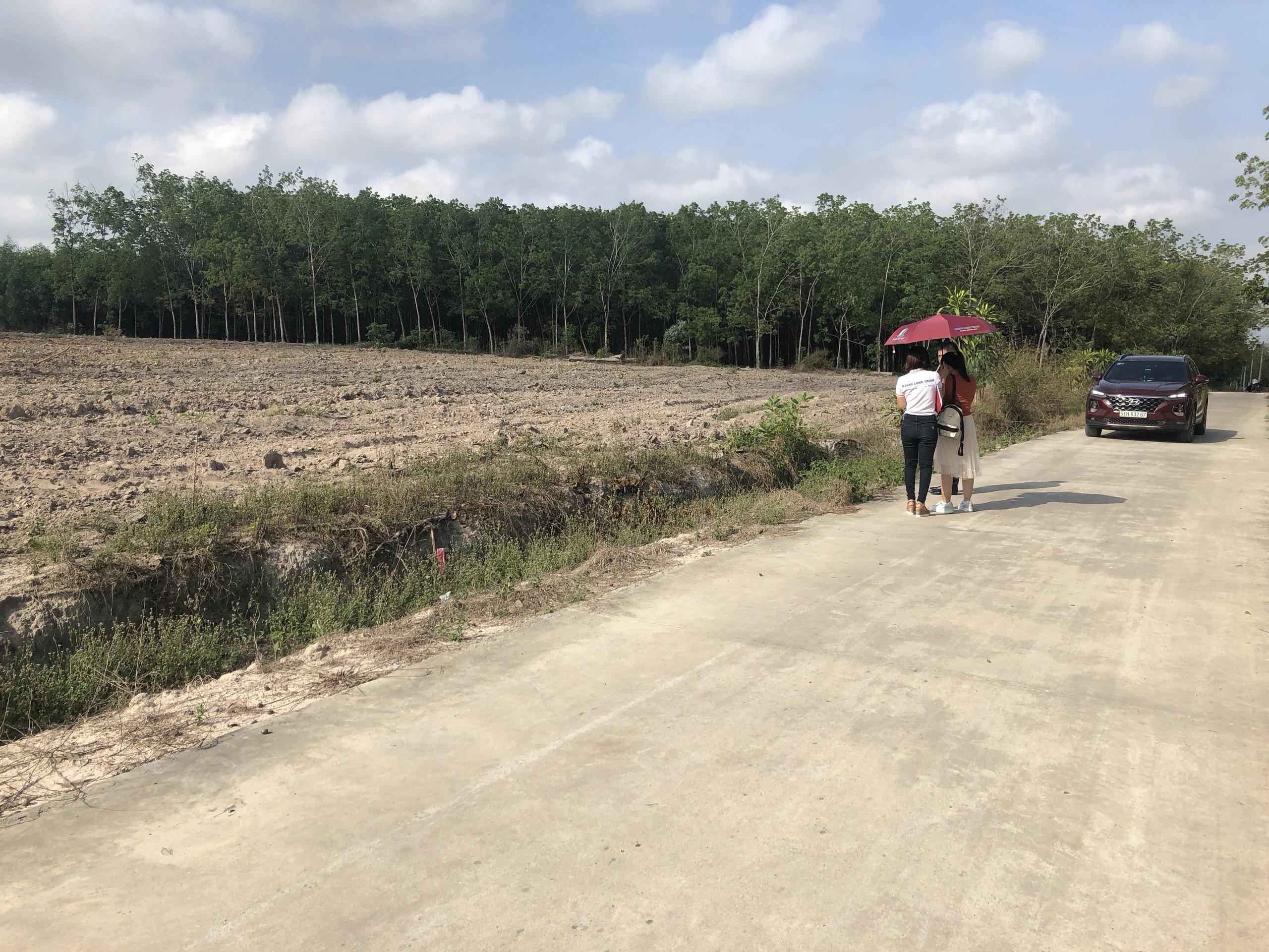 Đất sào xã Phước Bình, 1000m2, ngay trung tâm y tế xã